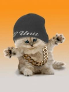 1228058999_4mobile.gehip_hop_cat