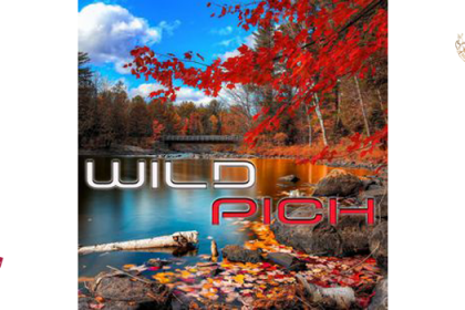 Wild Pich – Autumn Mixtape